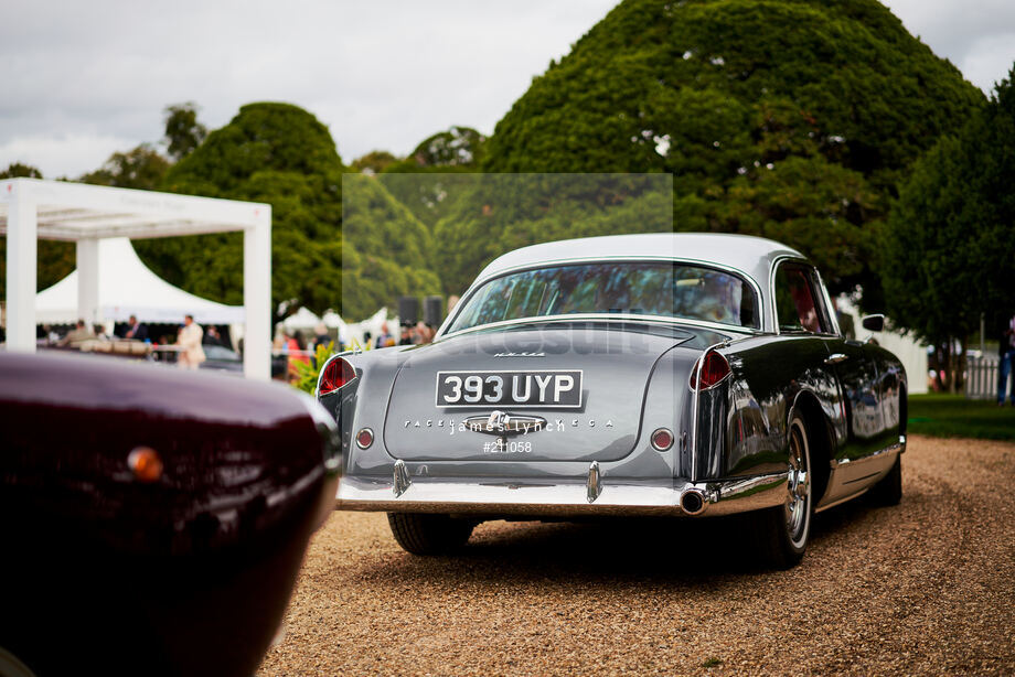 Spacesuit Collections Image ID 211058, James Lynch, Concours of Elegance, UK, 04/09/2020 15:10:06
