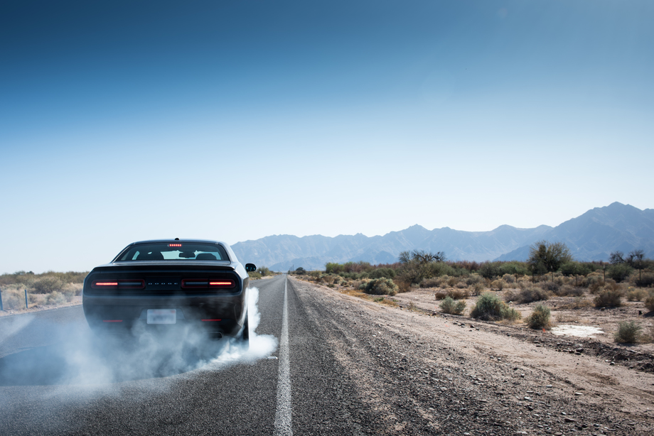 Dodge Challenger in Phoenix Collection Cover Photo