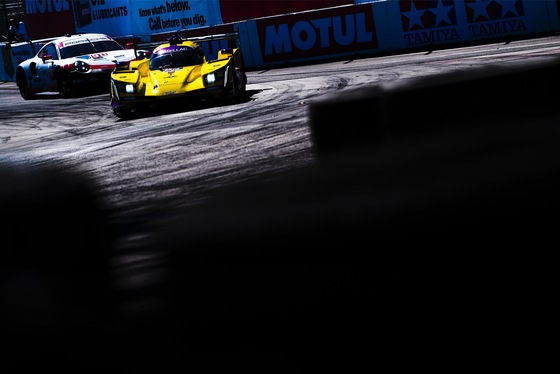 Jamie Sheldrick, IMSA Sportscar Grand Prix of Long Beach, United States, 13/04/2019 15:31:02 Thumbnail