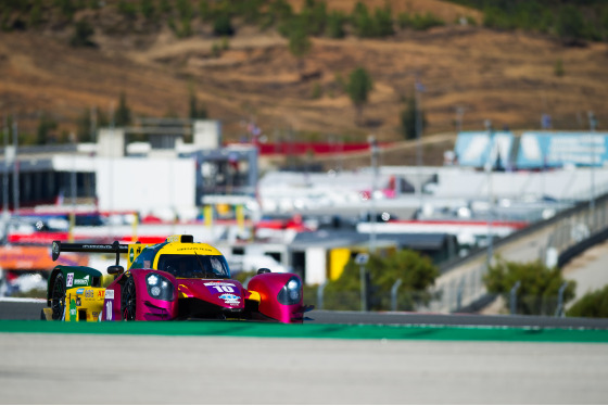 Telmo Gil, 4 Hours of Portimao, Portugal, 25/10/2019 12:55:54 Thumbnail