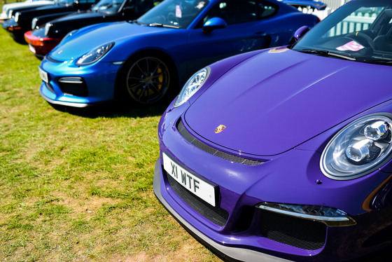 Andrew Soul, Festival of Porsche, UK, 02/09/2018 13:03:00 Thumbnail