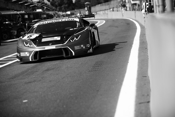 Jamie Sheldrick, British GT Brands Hatch, UK, 05/08/2017 10:01:10 Thumbnail