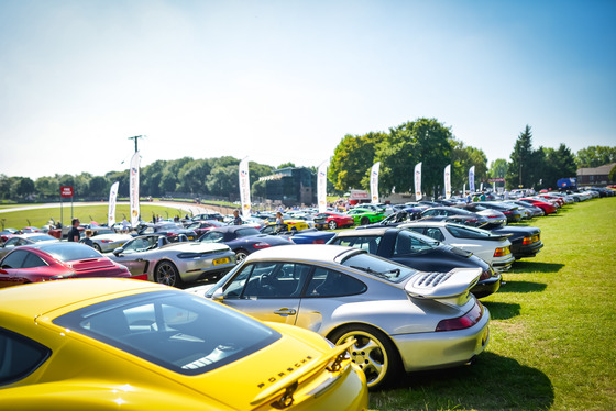 Andrew Soul, Festival of Porsche, UK, 02/09/2018 13:09:29 Thumbnail