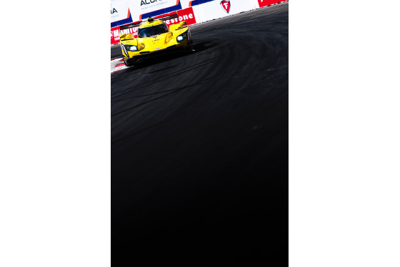 Jamie Sheldrick, IMSA Sportscar Grand Prix of Long Beach, United States, 13/04/2019 15:18:22 Thumbnail
