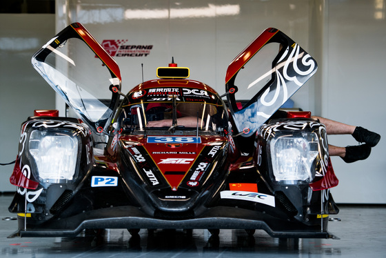 Lou Johnson, WEC Silverstone, UK, 16/08/2018 12:05:38 Thumbnail
