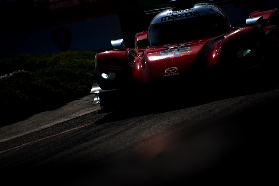 Dan Bathie, Toyota Grand Prix of Long Beach, United States, 13/04/2018 09:27:08 Thumbnail