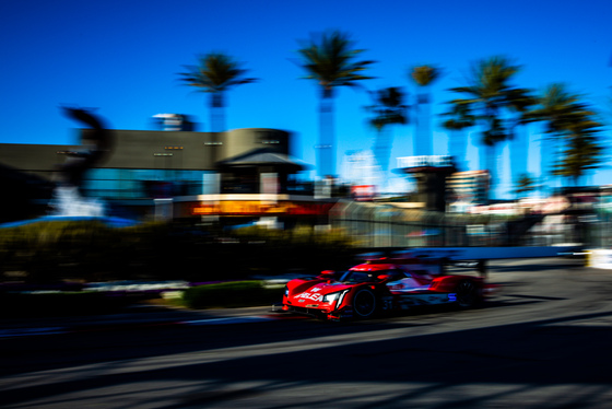Andy Clary, Acura Grand Prix of Long Beach, United States, 12/04/2019 19:59:55 Thumbnail