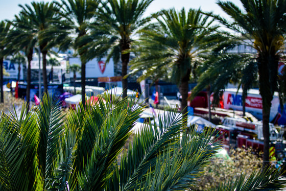 Andy Clary, Firestone Grand Prix of St Petersburg, United States, 08/03/2019 09:42:11 Thumbnail