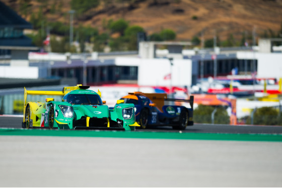 Telmo Gil, 4 Hours of Portimao, Portugal, 25/10/2019 12:38:15 Thumbnail