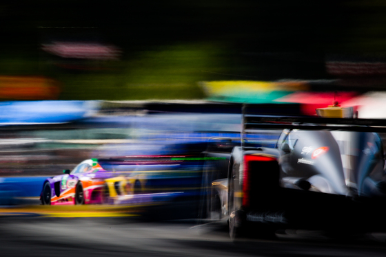 IMSA: Petit Le Mans 2019 Album Cover Photo