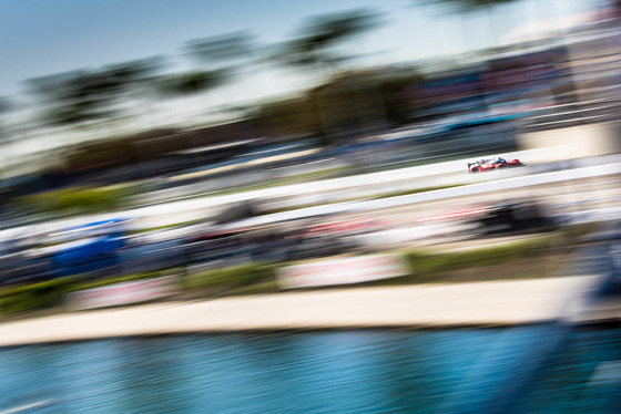 Dan Bathie, Toyota Grand Prix of Long Beach, United States, 13/04/2018 09:01:28 Thumbnail