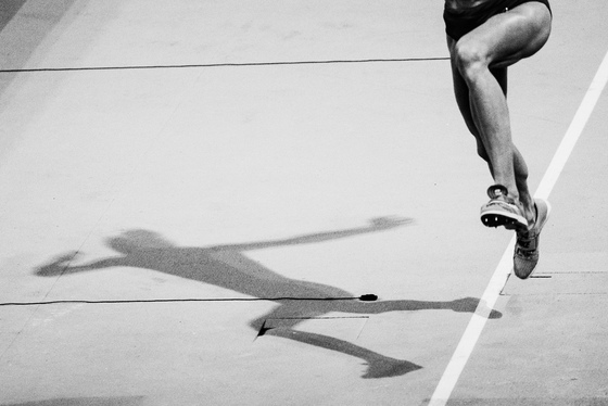 Adam Pigott, European Indoor Athletics Championships, UK, 03/03/2019 11:34:14 Thumbnail